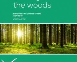 Image of SDSS AGM 'Getting out of the woods' programme. Green brochure with image of sunlight breaking through trees.