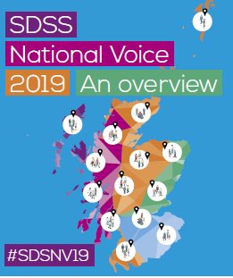 SDS National Voice 2019 report published and videos available!