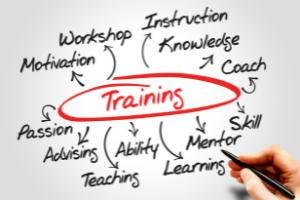Future training opportunities
